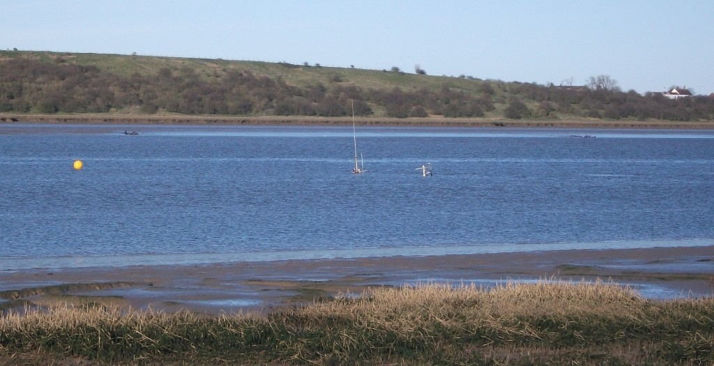 sunken trawler at Harty